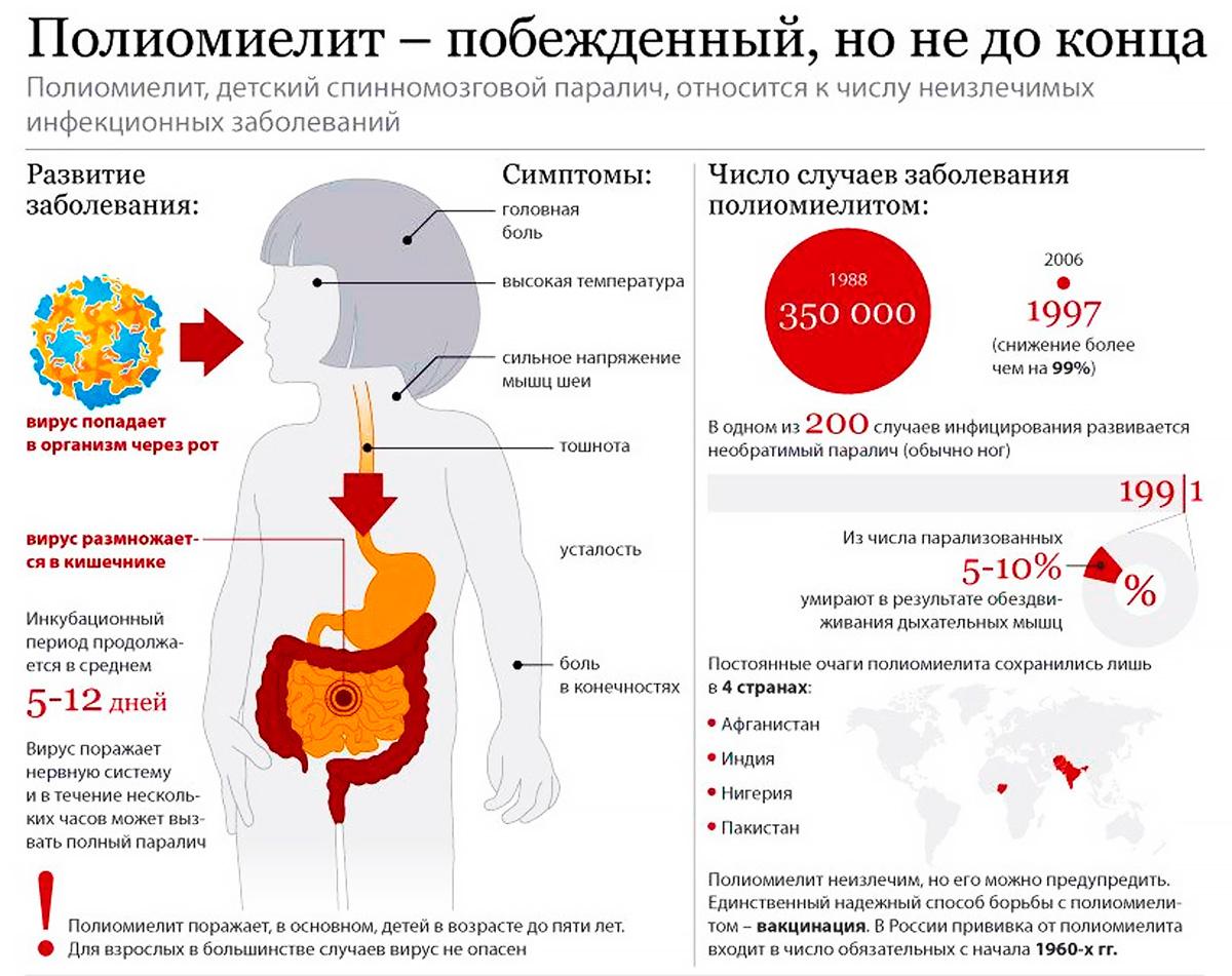 Куда ставят адсорбированную коклюшно- дифтерийно- столбнячную вакцину детям и взрослым